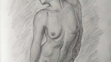 Anatomietekening van een jonge vrouw #1